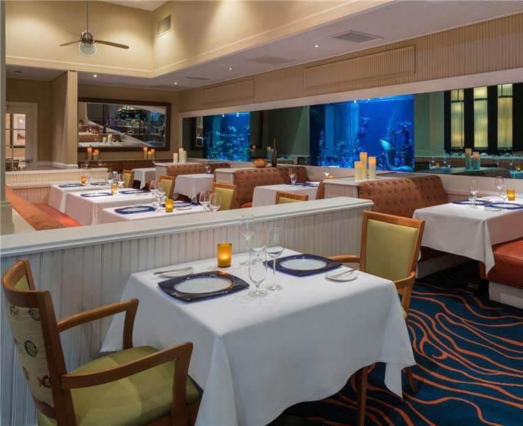 Food & Drink in St. Pete Beach Hotel