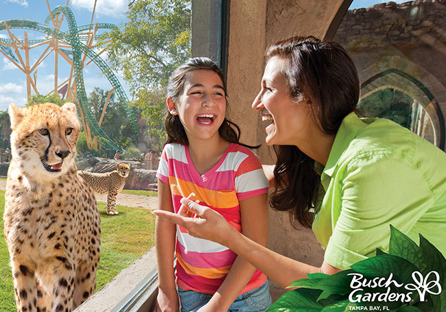 Busch Gardens Tampa at Florida