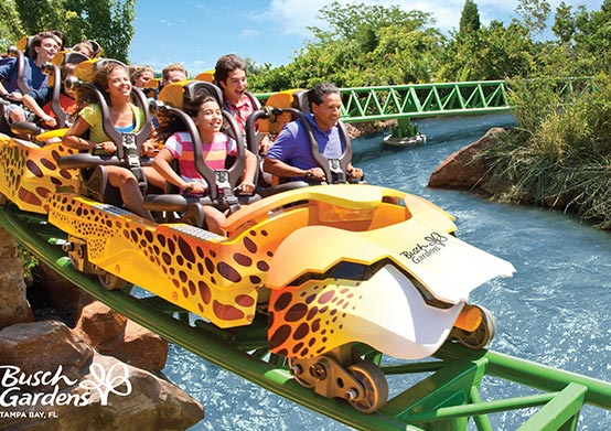 Busch Gardens Theme Park Package in Florida Hotel