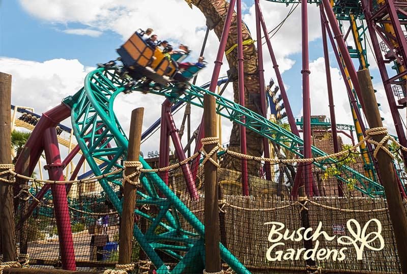 Busch Gardens Theme Park Package in St. Pete Beach Hotel